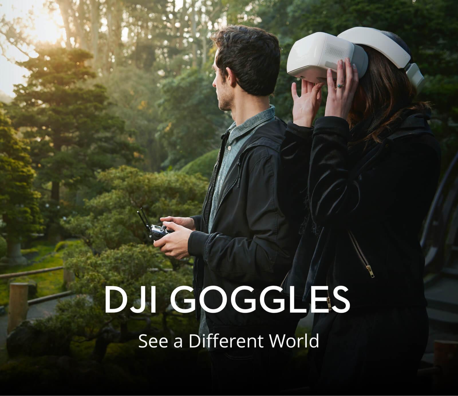 Buy Dji Goggles